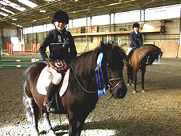 Riding School Somerset
