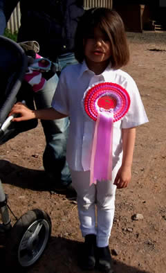Horse Riding Lessons Somerset